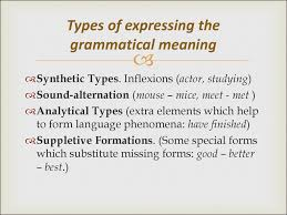 Types Meaning Grammatical Categories Grammatical Meaning Lektsia 2