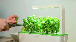 how to prune your plants click u0026 grow smart garden youtube
