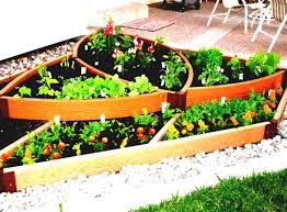easy vertical gardening ideas for beginners dengarden f garden