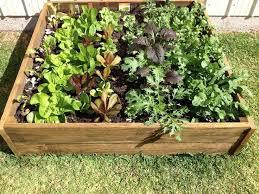 Zone Gardening - edible landscaping kitchen garden jardin potager bauerngarten