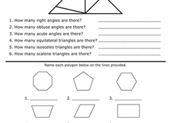 5th grade geometry worksheets u0026 free printables education com