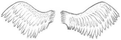 wing drawings blog title