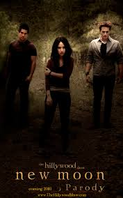 Twilight New Moon The Hillywood Show Does New Moon Twilight Guide
