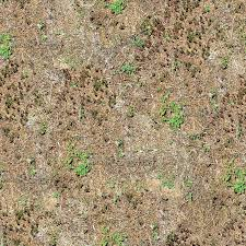 arid ground textures weeds 06 2048x2048 png opengameart org
