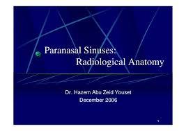Radiology Anatomy Ct Anatomy Of The Paranasal Sinuses
