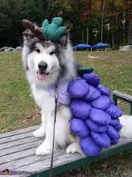 Halloween Grape Costume Grape Jelly Costume Grape Jelly Diy Costumes Costumes