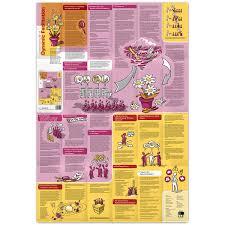 Dynamic Learning Maps Lernlandkarte Nr 8 Dynamic Facilitation Lernlandkarten