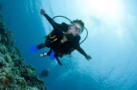 a scuba diver u0027s impact on a coral reef dive in