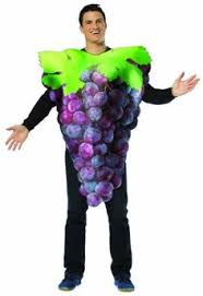 Coupons Halloween Costumes Child Blueberry Costume Transform
