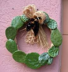 christmas wreath from cactus leaves succulent succulence in