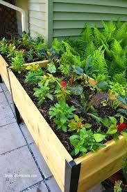 Raised Vegetable Garden Ideas Elevated Vegetable Garden Beds Best Elevated Garden Beds Ideas On