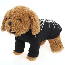 online buy wholesale spider winter coats from china spider winter