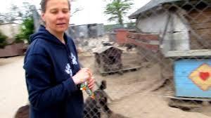 Tierheim Bad Segeberg Perelka E V Besuch In Wnada Jerzyks Tierheim In Przyborowko Mai