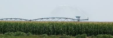 Irrigated Corn   irrigation and water management for corn cropwatch