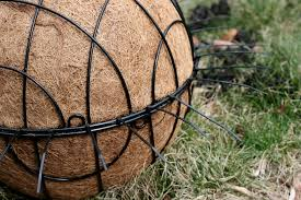 Garden Sphere Balls Hanging Lettuce Planter Great Idea But Too Heavy Sparks In