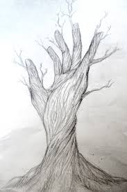 beautiful drawing nature pic drawing of sketch