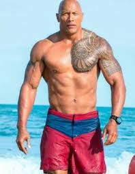 363 best dwayne johnson images on drawings