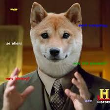 Doge Sex Meme - 125 best doge images on pinterest funny images funny photos and