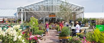 perrywood essex garden centre plant nursery in tiptree colchester