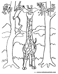giraffe and two trees coloring page create a printout or activity