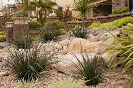 drought tolerant xeriscape landscape architect garden design