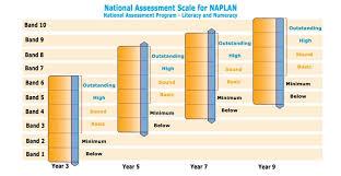 naplan englis literacy results student parent progress homework help