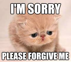 I Am Sorry Meme - funny i m sorry pictures http ddquotes com cute funny im sorry