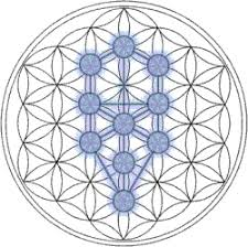 sacred geometry the flower of