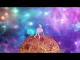Dancing Dog Meme - songs in dancing dog shooting stars youtube ecoe1scbozi mooma sh