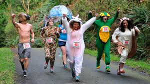 halloween animals costumes 5 fun costume ideas for your halloween race