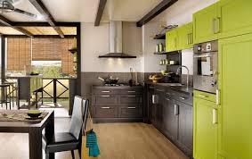 cuisine chaleureuse decoration cuisine chaleureuse armoires vert pistache couleur