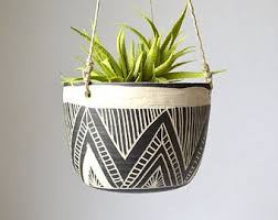 Modern Hanging Planters by Top 25 Best Hanging Wall Planters Ideas On Pinterest Cheap