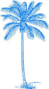 palm tree clip at clker com vector clip royalty
