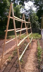 best 25 tomato trellis ideas on pinterest tomato support