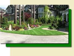 Evergreen Landscaping Ideas Evergreen Landscaping Design Home Ideas Pictures Homecolors