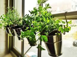 35 creative diy indoor herbs garden ideas ultimate indoor herb garden ideas gardening design