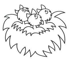 coloring pages birds nest kids colouring pages coloring home
