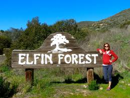 Maps San Diego Hiking San Diego Elfin Forest Reserve With Trail Map By
