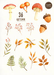 thanksgiving leaves clipart autumn leaf watercolor clipart wreath mushroom commercial use