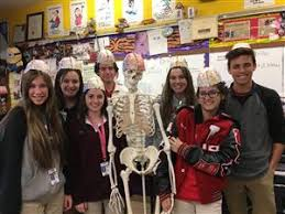 Anatomy And Physiology Class Loranger High Homepage