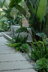 Tropical Landscape Design by Best 25 Tropical Landscaping Ideas Only On Pinterest Tropical