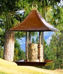 reviews u0026 useful info squirrel proof bird feeders