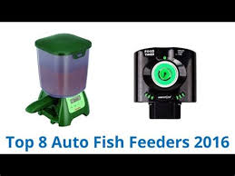 Best Auto Pond Feeder Newman