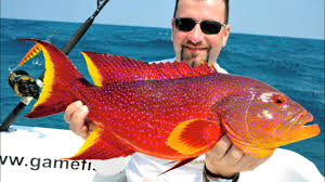 gt fishing in the andaman islands 02 2015