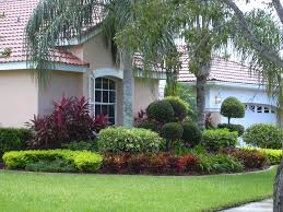 Modern Front Yard Desert Landscaping With Palm Tree And Inspiring Palm Tree Landscaping Ideas Design Ideas U0026 Decors