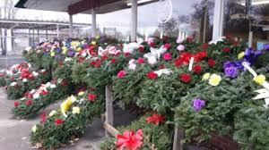 grave blankets grave blankets in westland mi westland florist greenhouse