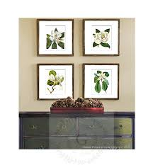 Magnolia Home Decor by Amazon Com Magnolia Flowers Vintage Botanical Wall Art Unframed