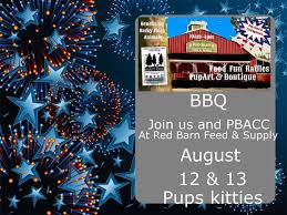 Red Barn In Loxahatchee Fl Dogs And Cool Kittens At Loxahatchee Fl United States