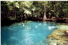 Florida State Parks Camping Map by Manatee Springs Scuba Diving This Florida State Park Spring