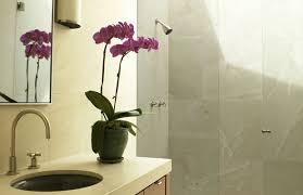 bathroom windowless brighter windowless half bathroom decor tsc